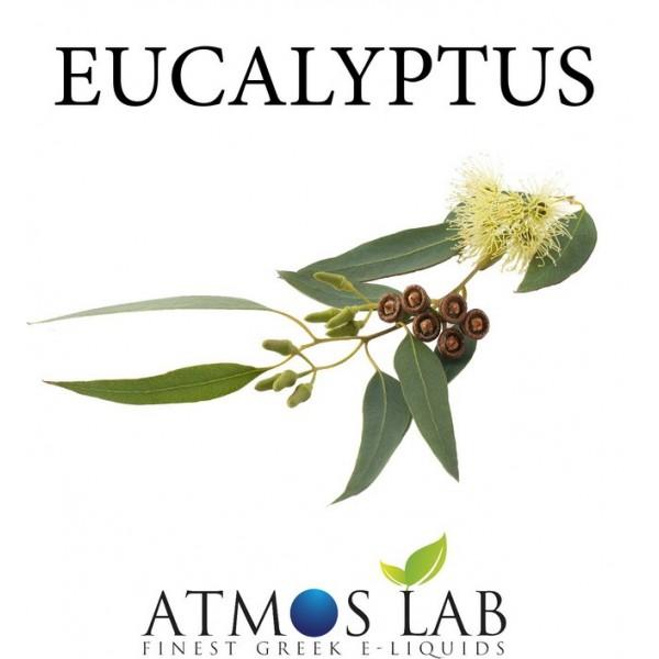 Eucalyptus DIY